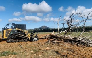 Forestry Mulching Services